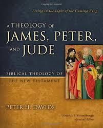 book theology j p j