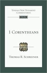 book 1 cor tntc.jpg
